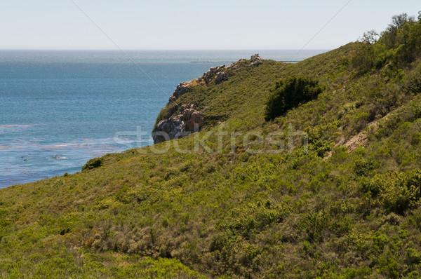 Cliffs Stock photo © disorderly