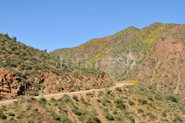 Apache Trail Stock photo © disorderly