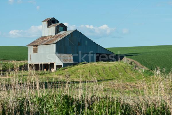 Schuur veld boerderij tarwe structuur velden Stockfoto © disorderly