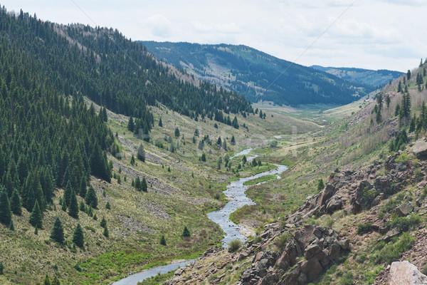 Arroyo alpino valle meridional Colorado agua Foto stock © disorderly