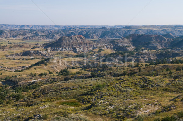 Badlands Stock photo © disorderly