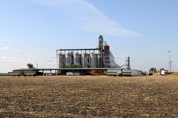Grain storage Stock photo © disorderly