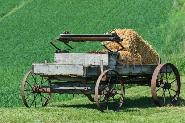 Wagon Stock photo © disorderly