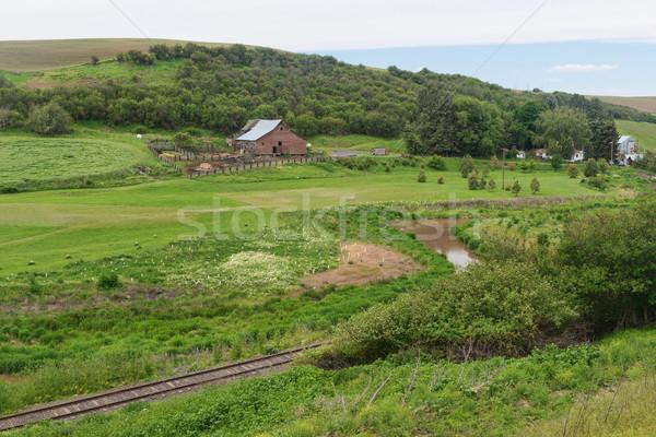 Farm Stock photo © disorderly