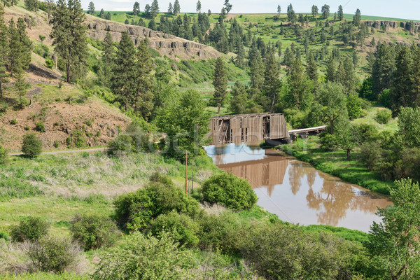 Fedett híd sáros patak víz Stock fotó © disorderly
