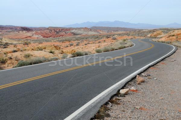 Desert road Stock photo © disorderly