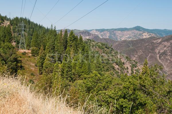 Utility toren hoog spanning lijnen reebok Stockfoto © disorderly