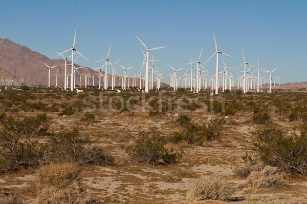 Farma wiatrowa dłoni moc wiatr California pokolenie Zdjęcia stock © disorderly