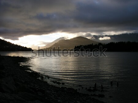 Tó reggel botanikus kertek Új-Zéland Stock fotó © disorderly