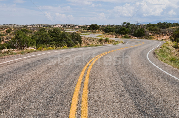 Winding road Stock photo © disorderly
