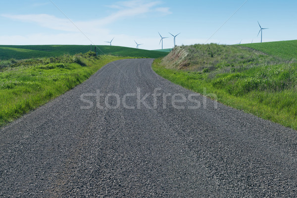 Gravel road Stock photo © disorderly