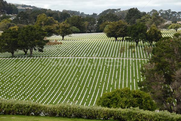 Stock photo: Military cemetery