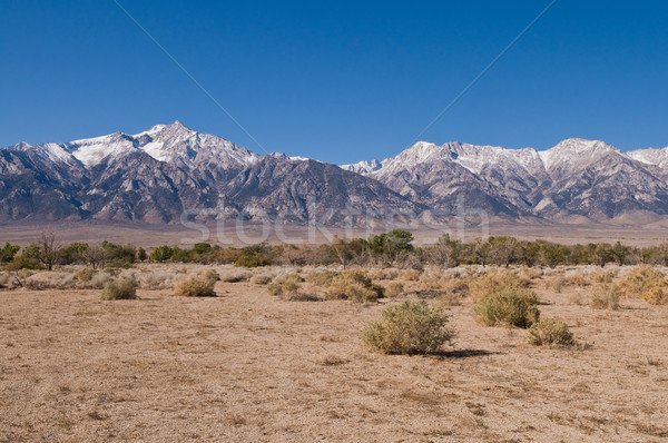 Sierra Nevadas Stock photo © disorderly