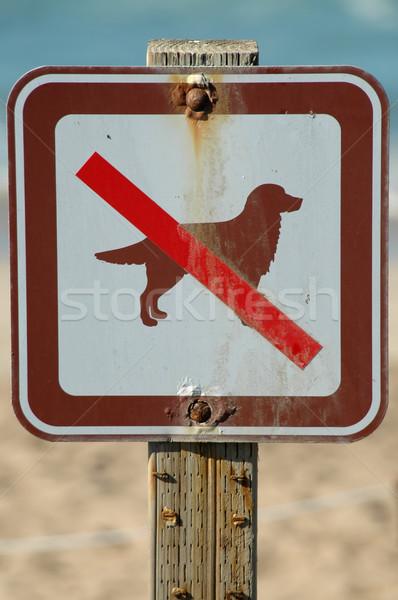 Não cães permitido assinar marina praia Foto stock © disorderly
