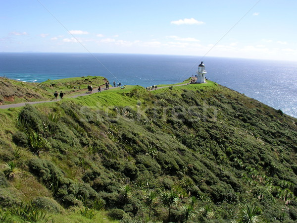 Cape Reinga Lighthouse Stock photo © disorderly