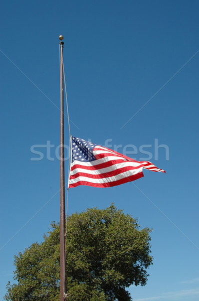 Foto stock: Mitad · personal · bandera · de · Estados · Unidos · azul · muerte · muertos