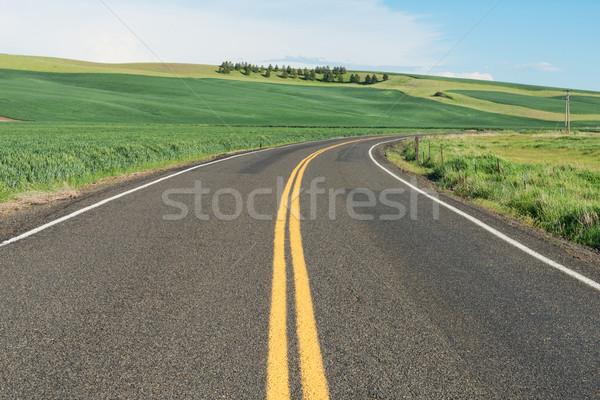 Road Stock photo © disorderly