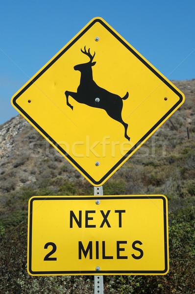 оленей следующий мили признаков металл шоссе Сток-фото © disorderly