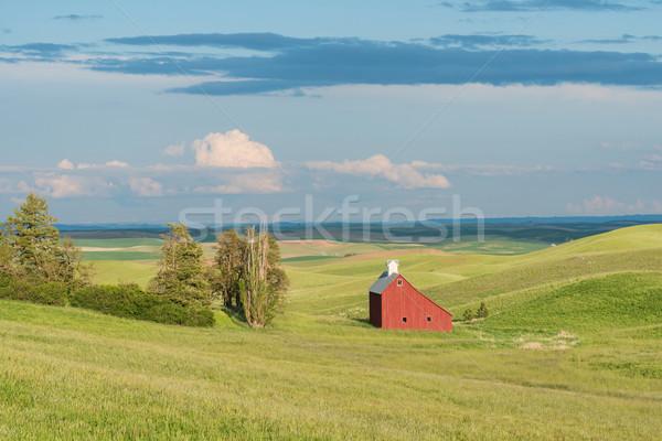 Barn Stock photo © disorderly