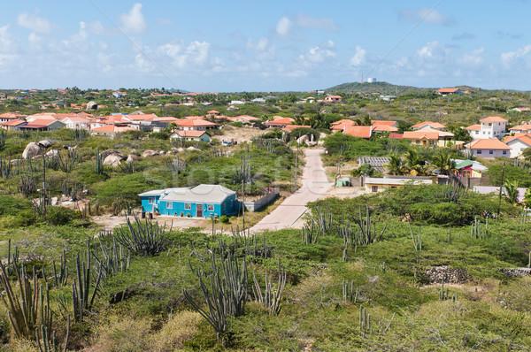 Vista formación de roca paisaje isla comunidad cactus Foto stock © disorderly