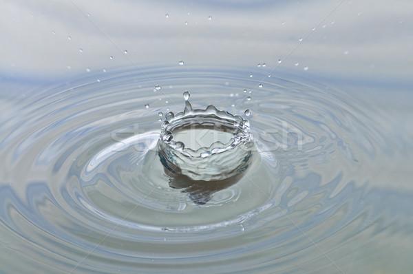 Splash Stock photo © disorderly