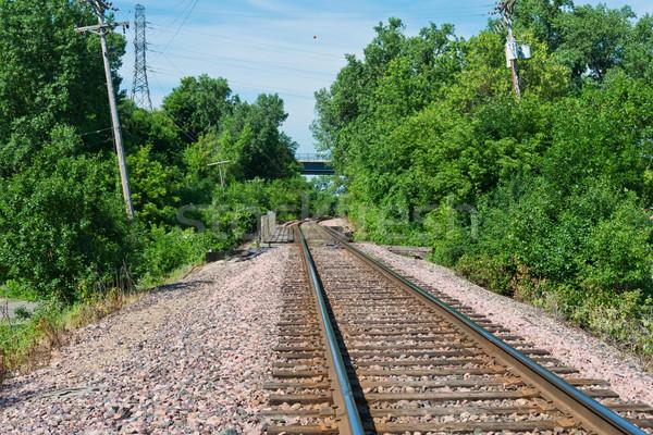 Vasúti sinek erdő Minnesota közlekedés Stock fotó © disorderly