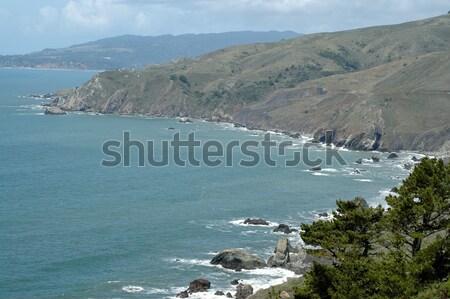 Pacific coast Stock photo © disorderly