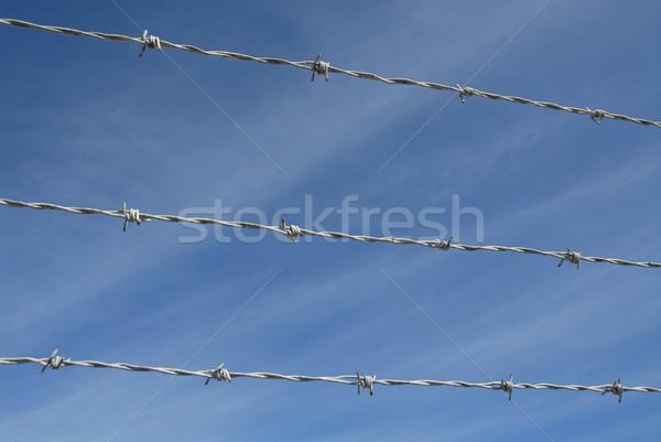 Stockfoto: Prikkeldraad · blauwe · hemel · veiligheid · hek