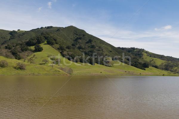 Сток-фото: водохранилище · холме · Калифорния · воды · лес · деревья