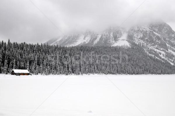 Сток-фото: озеро · зима · парка · деревья · области · гор