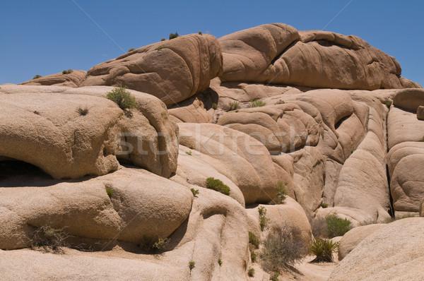 Jumbo Rocks Stock photo © disorderly