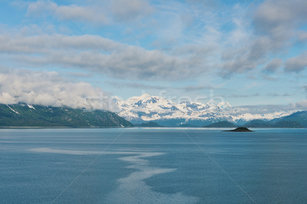 Geleira parque Alasca neve montanhas mata Foto stock © disorderly