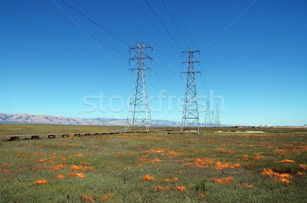 Baylands Stock photo © disorderly