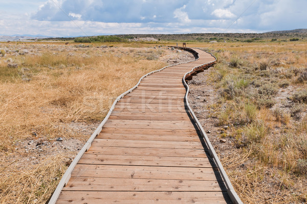 Boardwalk Stock photo © disorderly