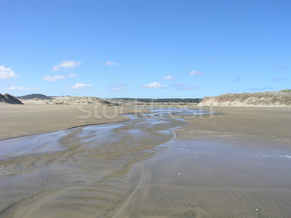 Stock photo: Tracks on the beach