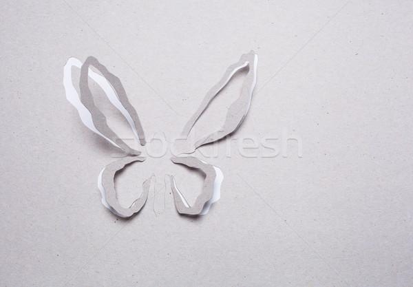 Pillangó origami kép absztrakt fehér tavasz Stock fotó © djemphoto