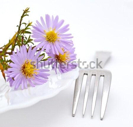 Bloem vork geïsoleerd witte voorjaar liefde Stockfoto © djemphoto