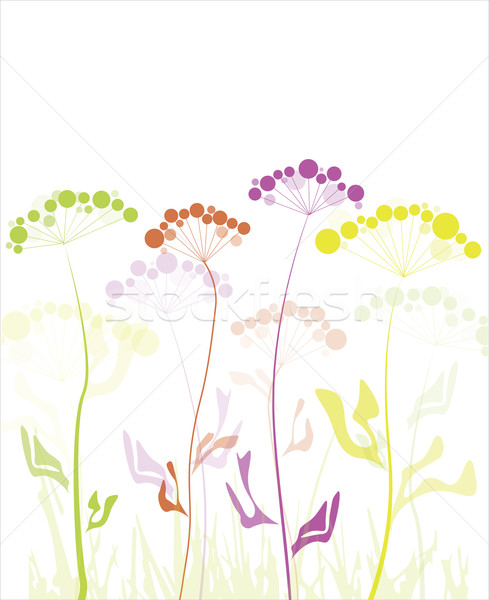 Abstract witte vector frame kunst Stockfoto © djemphoto