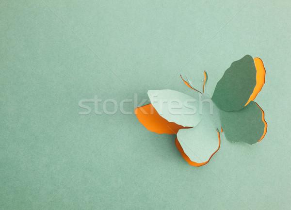 Vlinder origami voorjaar liefde groene silhouet Stockfoto © djemphoto