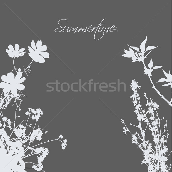 Gras bloemen grijs achtergrond bloem boom Stockfoto © djemphoto