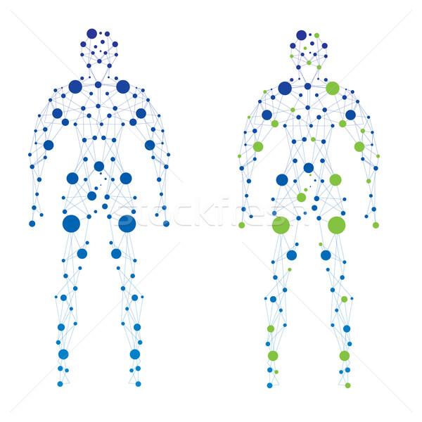 Abstract menselijke model man deeltjes vector Stockfoto © djemphoto