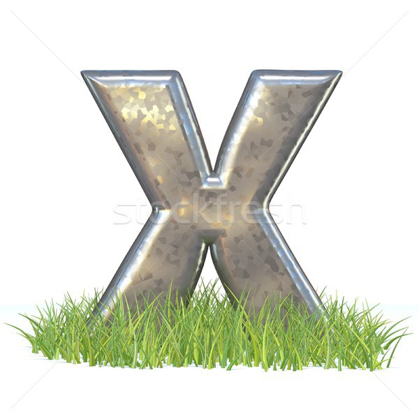 Galvanized metal font Letter X in grass 3D Stock photo © djmilic