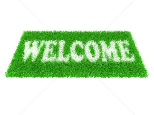 Grass welcome carpet. Welcome doormat carpet Stock photo © djmilic