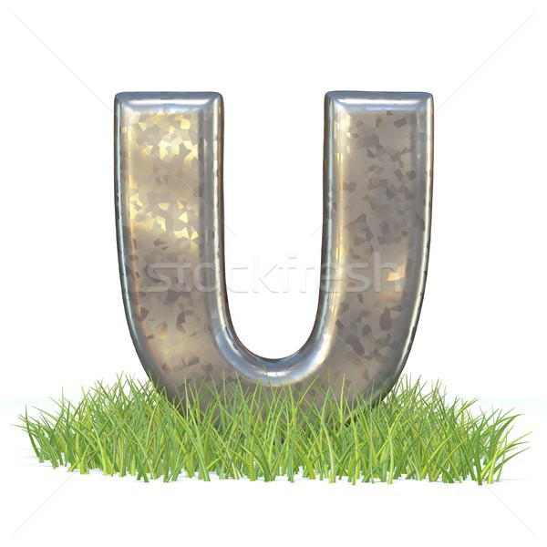 Galvanizált fém betűtípus levél fű 3D Stock fotó © djmilic