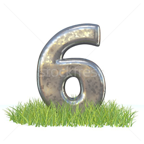 Galvanized metal font Number SIX 6 in grass 3D Stock photo © djmilic