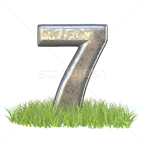 гальванизированный металл шрифт числа семь трава Сток-фото © djmilic