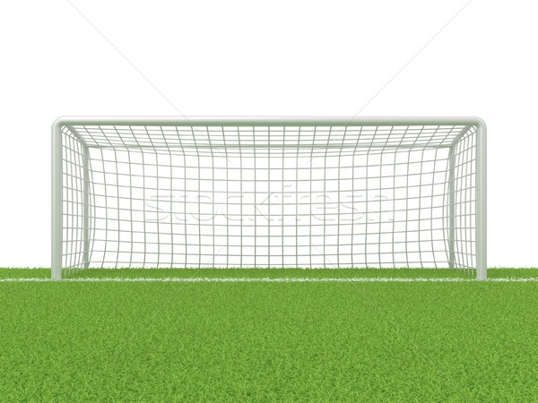 Football - soccer gate on grass. 3D Stock photo © djmilic