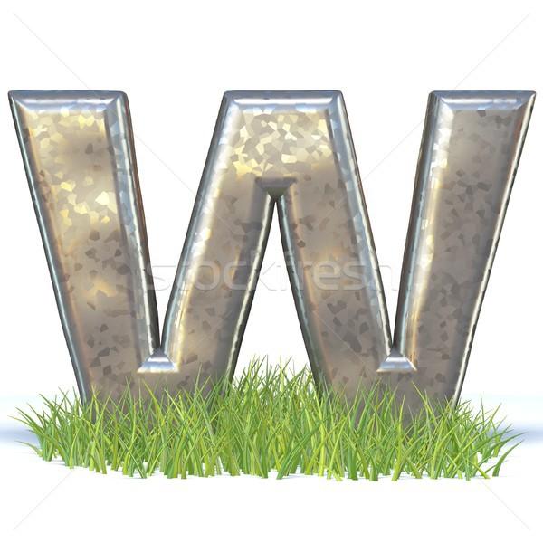 гальванизированный металл шрифт трава 3D Сток-фото © djmilic