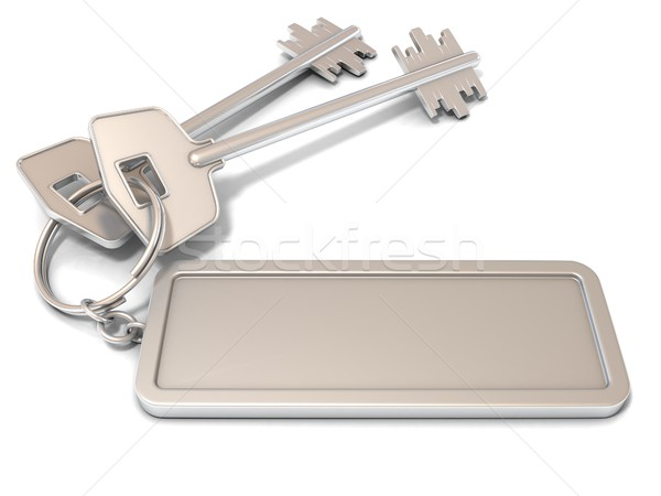 Two door keys and rectangular blank label on ring. 3D Stock photo © djmilic