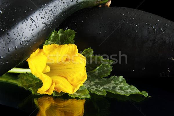 Flores preto ver dois flor folha Foto stock © dla4